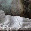 tuong-chu-tieu (10)